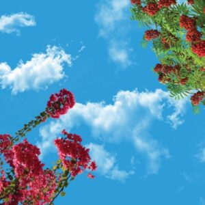 آسمان مجازی درخت و گل 2x3-28-