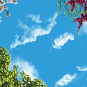 آسمان مجازی درخت و گل 3x4-7