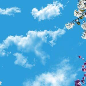 آسمان مجازی شکوفه سفید 2x4-11