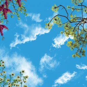 آسمان مجازی شکوفه قرمز و سفید 3x4-14