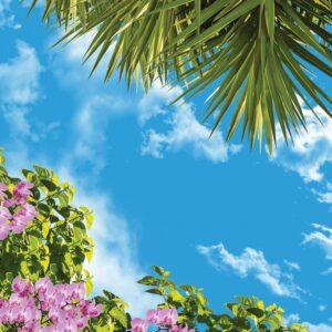 آسمان مجازی نخل و گل ارکیده 2x2-14
