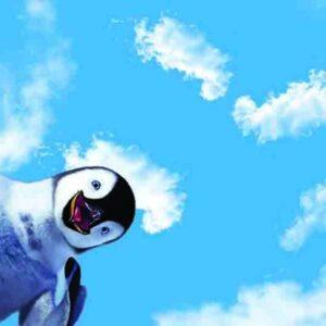 آسمان مجازی پنگوئن 2x3-40