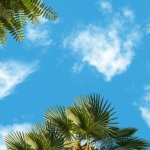 آسمان مجازی 3x5 - 7
