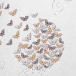 پوستر تصویر سه بعدی پروانه ها در زمینه طوسی ساده